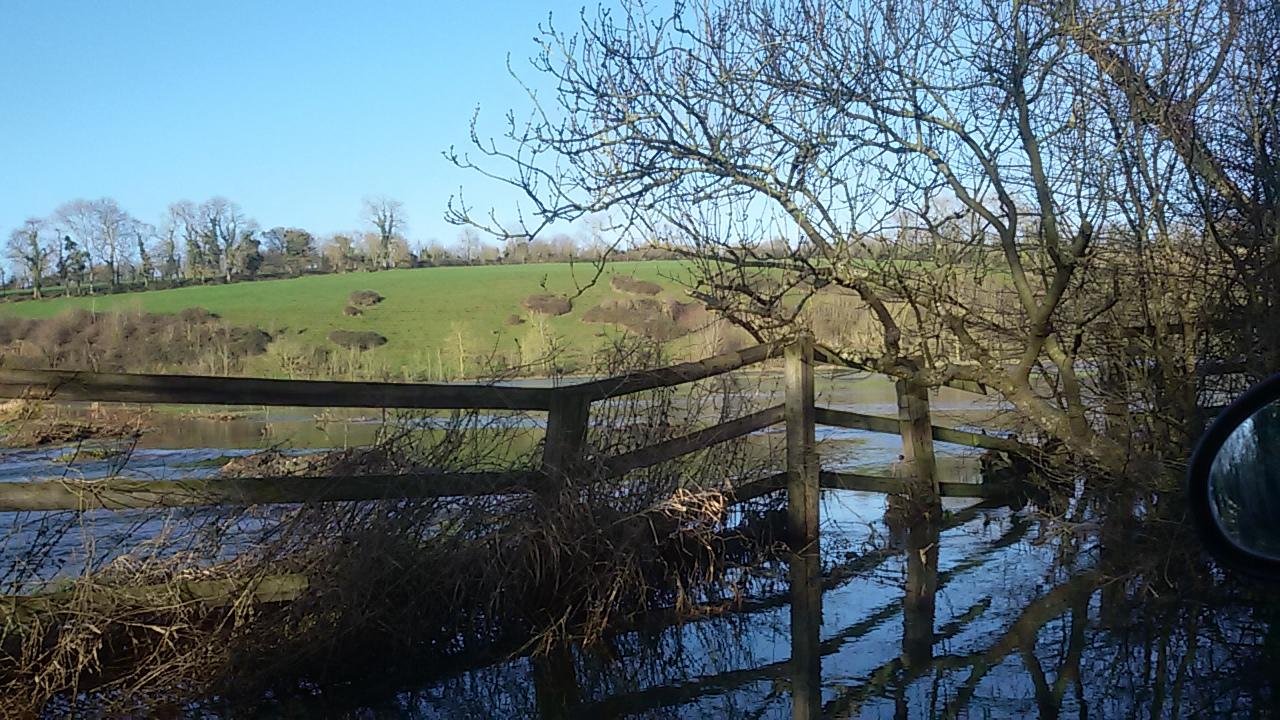 Le marais, au pied de Mandeville-en-Bessin