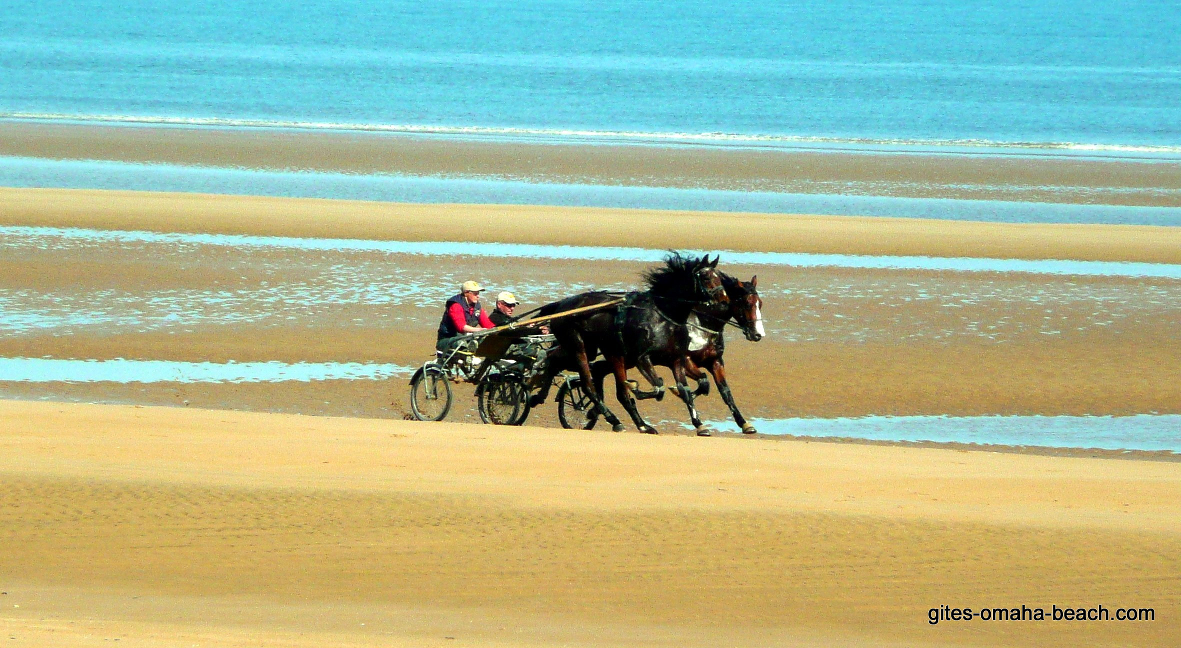 Chevaux s'entraînant sur la plage d'Omaha Beach à Vierville-sur-mer